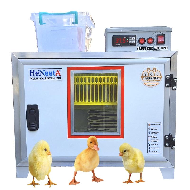 Kuluçka Çıkım Makinesi - 54 Yumurta Kapasiteli - Henesta
